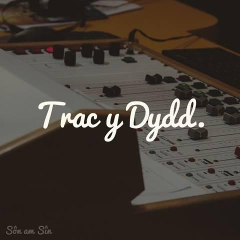 tracydydd